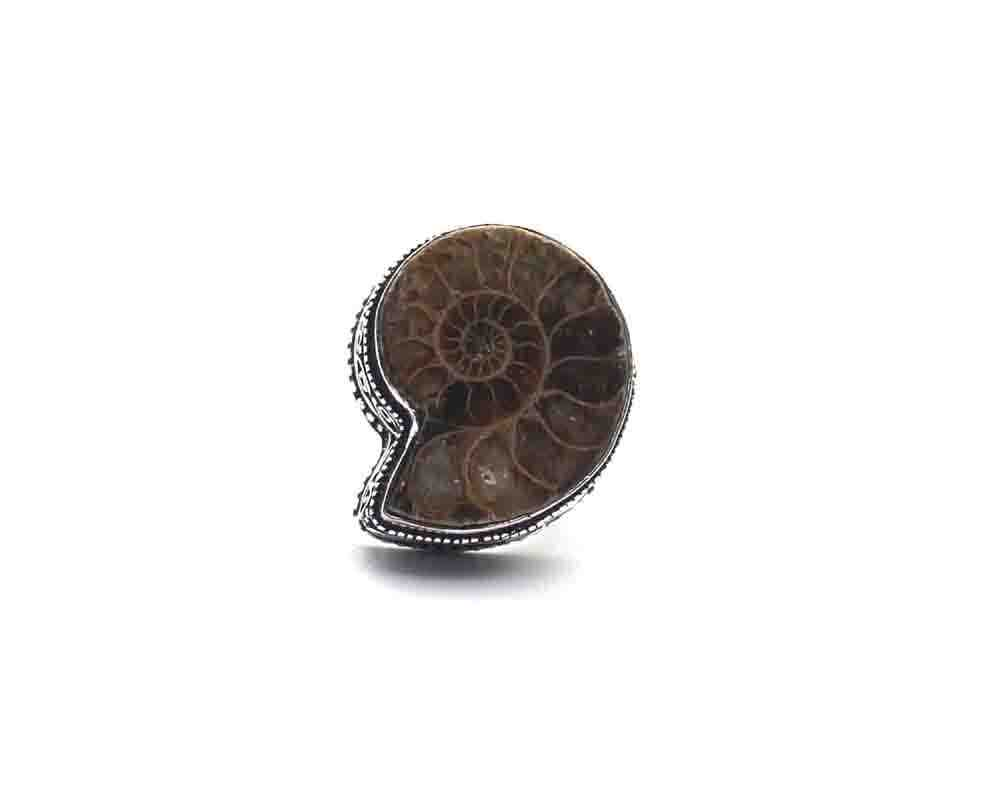 Ammonite Fossil ring set in Coated Silver Size 8.75 US