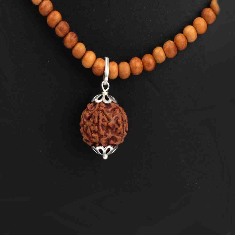 Rudraksha Pendant with Chandan Mala
