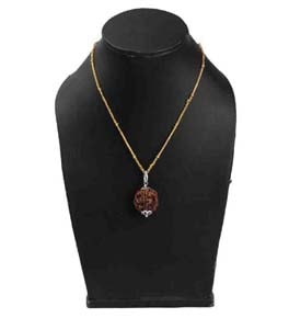 Rudraksha Pendant with Gold Coated Chain