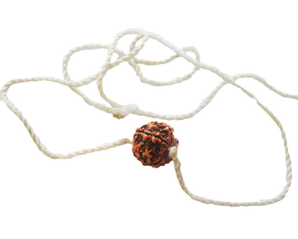 Original Panchmukhi Rudraksha Mala In White Thread